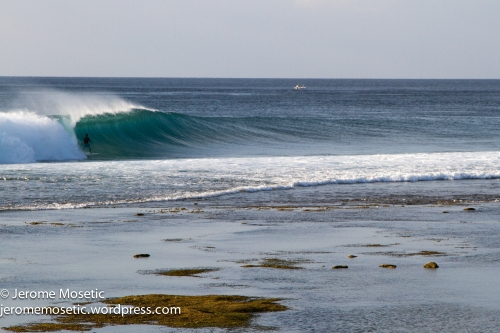 The lower section of the reef was also cooking, super shallow and hollow.